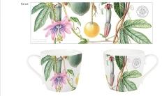 RBGE mug